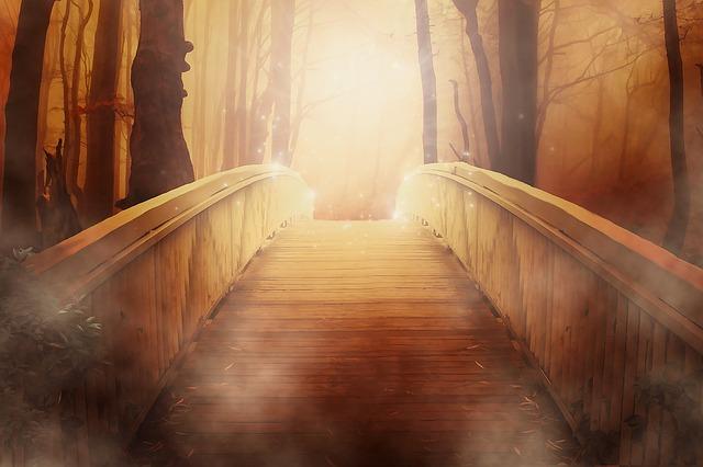 most v lese